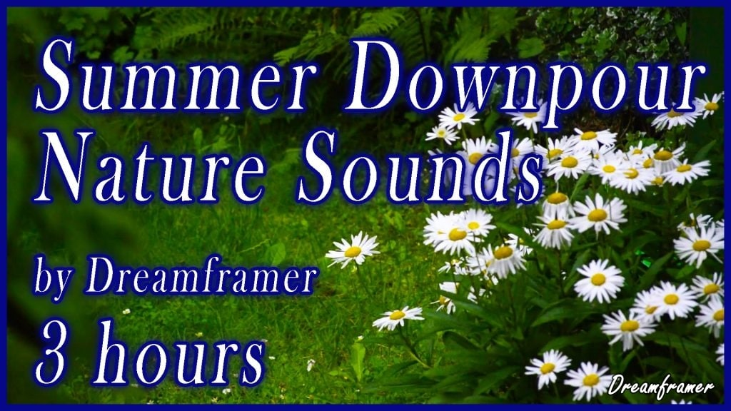 Summer Downpour Nature Sounds