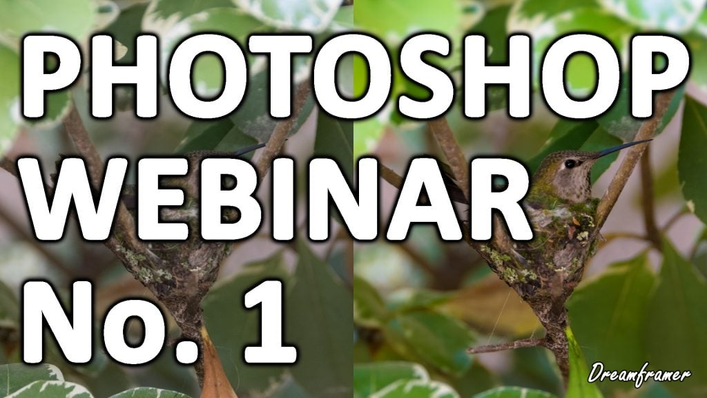 stock photography webinar 1